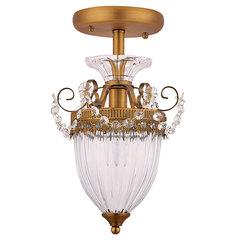 Светильник Arte Lamp Schelenberg A4410PL-1SR