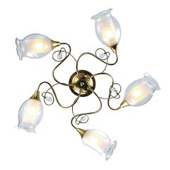 Люстра Arte Lamp Mughetto A9289PL-5GO