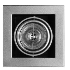Светильник встраиваемый поворотный Arte Lamp Cardani medio A5930PL-1SI
