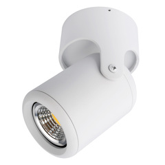 Светильник точечный Arte Lamp Libra A3316PL-1WH