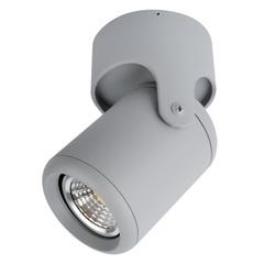 Светильник точечный Arte Lamp Libra A3316PL-1GY