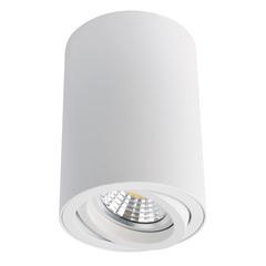 Светильник точечный Arte Lamp Sentry A1560PL-1WH