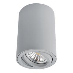 Светильник точечный Arte Lamp Sentry A1560PL-1GY