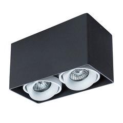 Светильник точечный Arte Lamp Pictor A5654PL-2BK