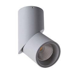 Светильник точечный Arte Lamp Meisu A7717PL-1GY